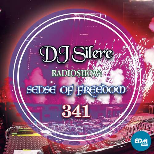DJ Silere - Sense Of Freedom 341